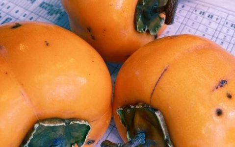 干し柿作り♪